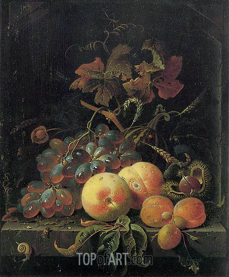Fruit Still Life with Peaches, Grapes and Apricots, undated | Abraham Mignon| Painting Reproduction