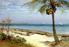 Tropical Coast, undated by Bierstadt | Painting Reproduction