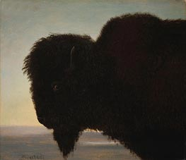 Buffalo Head, c.1879 by Bierstadt | Painting Reproduction