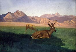 Deer, indated by Bierstadt | Painting Reproduction
