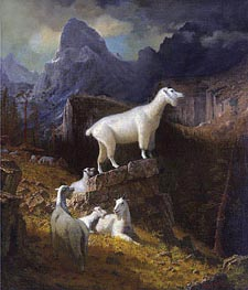 Rocky Mountain Goats, c.1885 by Bierstadt | Painting Reproduction