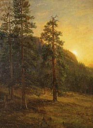 California Redwoods, 1872 by Bierstadt | Painting Reproduction
