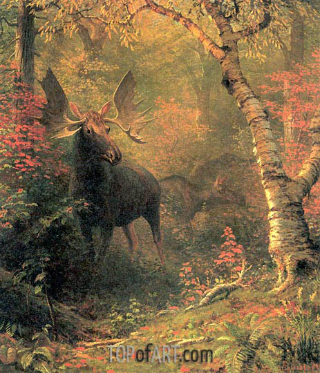 Moose, After 1880 | Bierstadt | Painting Reproduction