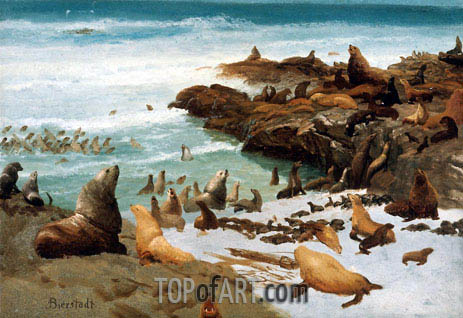 Seal Rocks, Farallons, 1872 | Bierstadt | Painting Reproduction