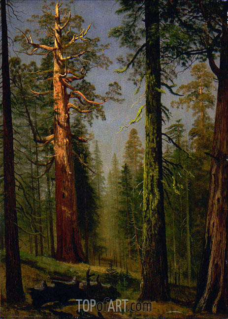 The Grizzly Giant Sequoia, Mariposa Grove, California, c.1872/73 | Bierstadt| Painting Reproduction