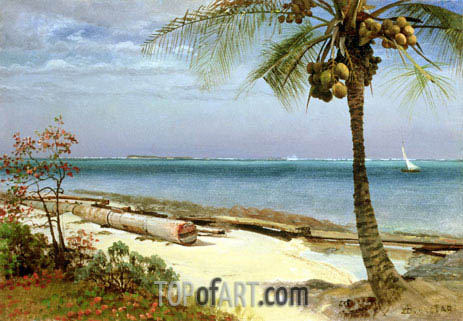 Tropical Coast, undated | Bierstadt | Gemälde Reproduktion