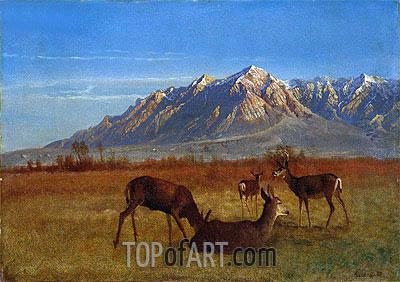 Deer in Mountain Home, c.1879 | Bierstadt | Painting Reproduction