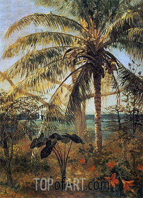 Bierstadt | Palm Tree, Nassau, 1892