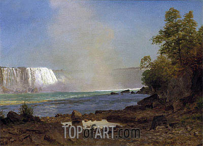 Niagara Falls, 1863 | Bierstadt | Painting Reproduction