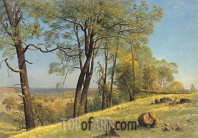 Rockland County, California, c.1872 | Bierstadt| Painting Reproduction