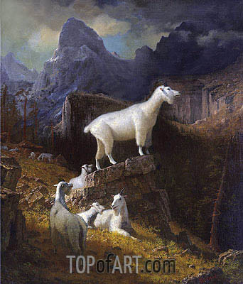 Rocky Mountain Goats, c.1885 | Bierstadt | Painting Reproduction