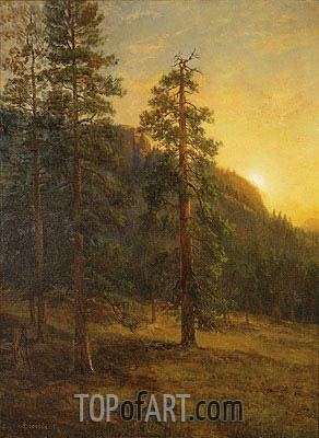 California Redwoods, 1872 | Bierstadt | Painting Reproduction