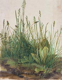 The Great Piece of Turf, 1503 by Durer | Painting Reproduction