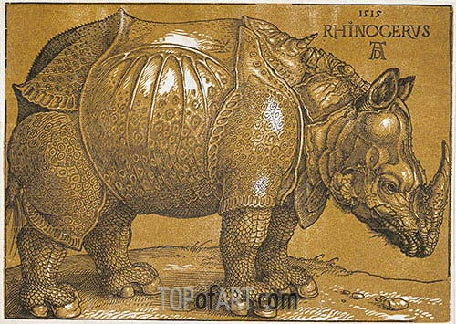 Rhinocerus, 1515 | Durer| Painting Reproduction