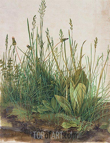 The Great Piece of Turf, 1503 | Durer | Painting Reproduction