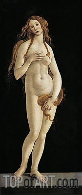 Venus,  | Botticelli| Painting Reproduction