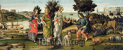 The Judgement of Paris,  | Botticelli | Gemälde Reproduktion