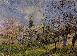 Orchard in Spring - By, 1881 by Alfred Sisley | Painting Reproduction
