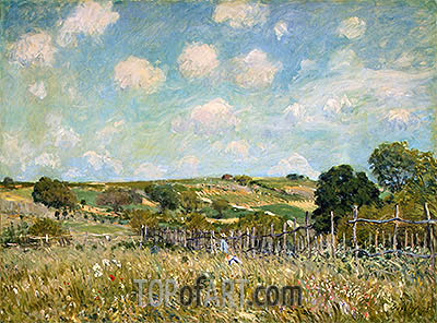 Meadow, 1875 | Alfred Sisley| Painting Reproduction