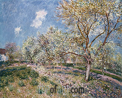 Springtime at Veneux, 1880 | Alfred Sisley| Painting Reproduction