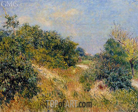 Alfred Sisley | The Edge of the Fontainbleau Forest - June Morning, 1885