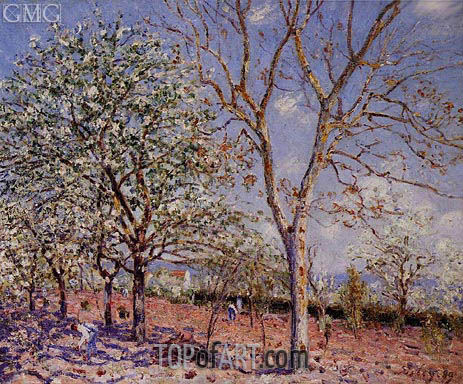 Plum and Walnut Trees in Spring, 1889 | Alfred Sisley | Painting Reproduction