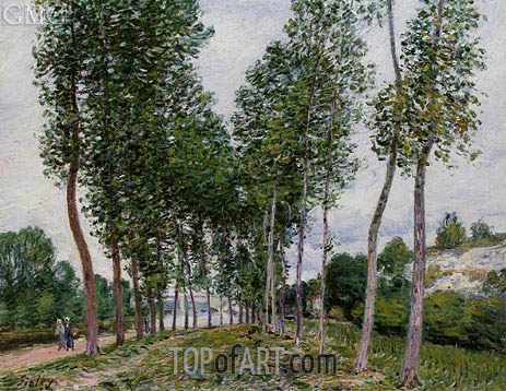 The Avenue of Poplars along the Banks of the Loing, 1892 | Alfred Sisley | Painting Reproduction