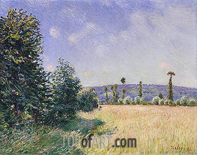Sahurs Meadows in Morning Sun, 1894 | Alfred Sisley | Painting Reproduction