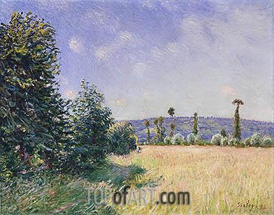 Alfred Sisley | Sahurs Meadows in Morning Sun, 1894