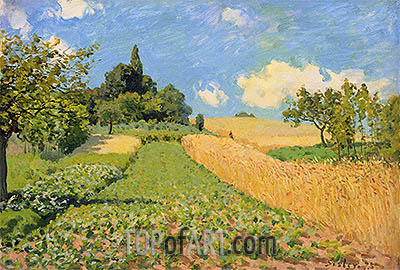 The Cornfield near Argenteuil, 1873 | Alfred Sisley | Gemälde Reproduktion
