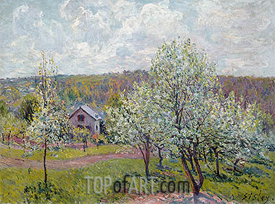 Spring in the Environs of Paris, Apple Blossom, 1879 | Alfred Sisley| Painting Reproduction