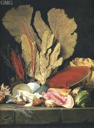 Still Life with Tuft of Marine Plants, Shells and Corals | Vallayer-Coster | outdated