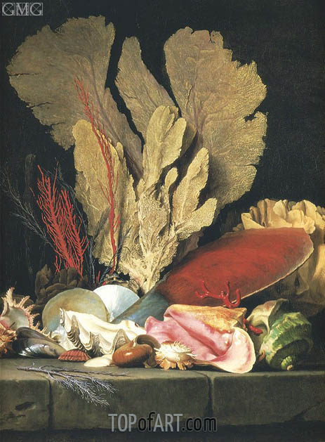 Still Life with Tuft of Marine Plants, Shells and Corals, 1769 | Vallayer-Coster | Gemälde Reproduktion