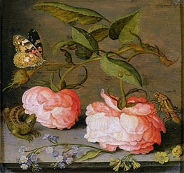 A Still Life with Roses on a Ledge, undated von van der Ast | Gemälde-Reproduktion