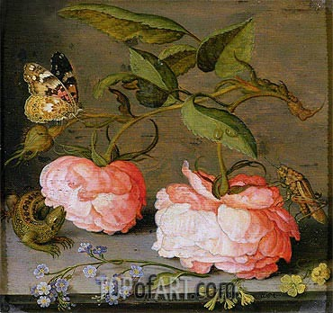 van der Ast | A Still Life with Roses on a Ledge, undated