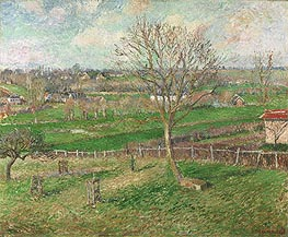 The Field and the Great Walnut Tree in Winter, Eragny, 1885 by Pissarro | Painting Reproduction