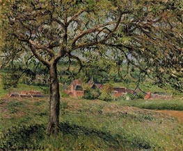Apple Tree at Eragny | Pissarro | Gemälde Reproduktion