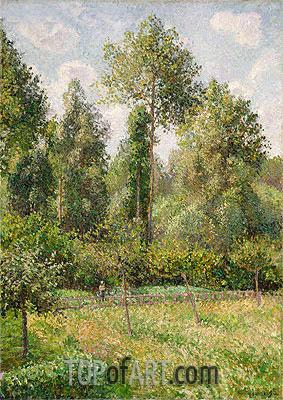 Pissarro | Poplars, Eragny, 1895