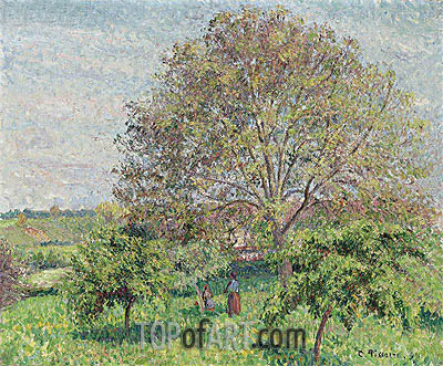 The Big Walnut at Spring, Eragny, 1894 | Pissarro | Painting Reproduction