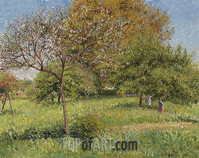The Large Walnut, Morning, Eragny, 1901 | Pissarro| Painting Reproduction