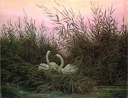 Swans in the Reeds | Caspar David Friedrich | outdated