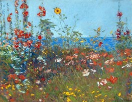 Poppies, Isles of Shoals, c.1890 von Hassam | Gemälde-Reproduktion