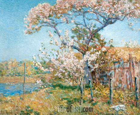 Apple Trees in Bloom, Old Lyme, 1904 | Hassam| Painting Reproduction