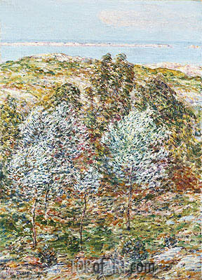 Springtime Vision, 1900 | Hassam| Painting Reproduction