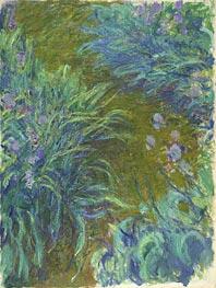 Irises, c.1914/17 von Monet | Gemälde-Reproduktion
