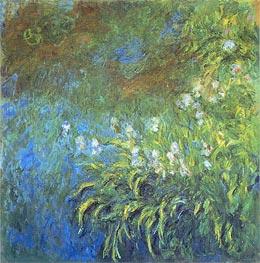 Iris | Monet | Painting Reproduction