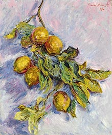 Lemons on a Branch | Monet | outdated
