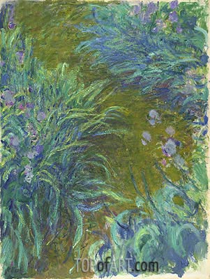Irises, c.1914/17 | Monet | Painting Reproduction