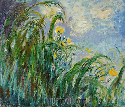 The Yellow Iris, c.1924/25 | Monet| Painting Reproduction