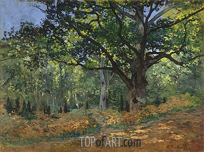 The Bodmer Oak, Fontainebleau Forest, 1865 | Monet | Painting Reproduction